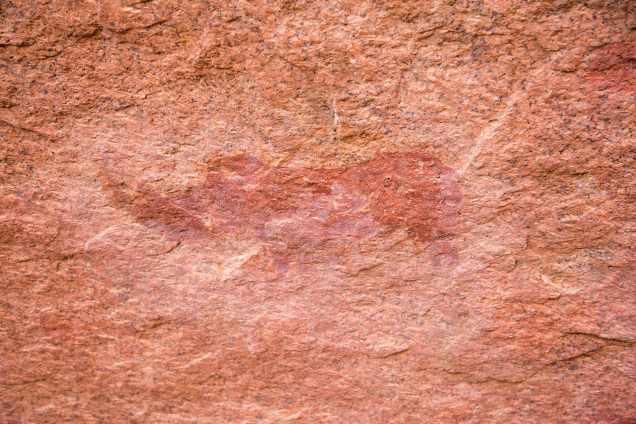 Rhino-drawingweb