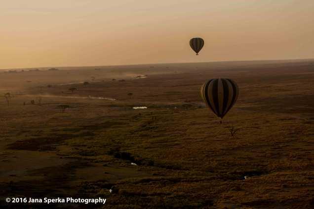 balloon-ride_6web