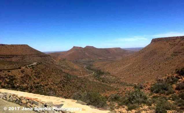 Karoo-Klipsringer-passweb