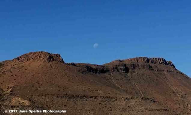 Karoo-with-moonweb
