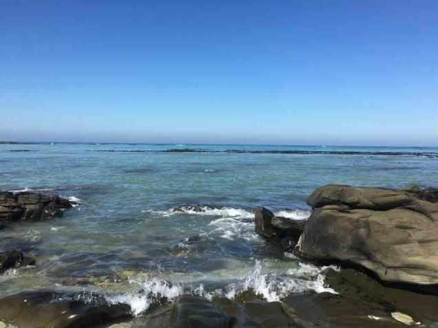 ShoreviewWeb